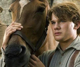 War-Horse-007
